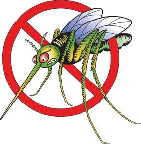 NO al mosquito
